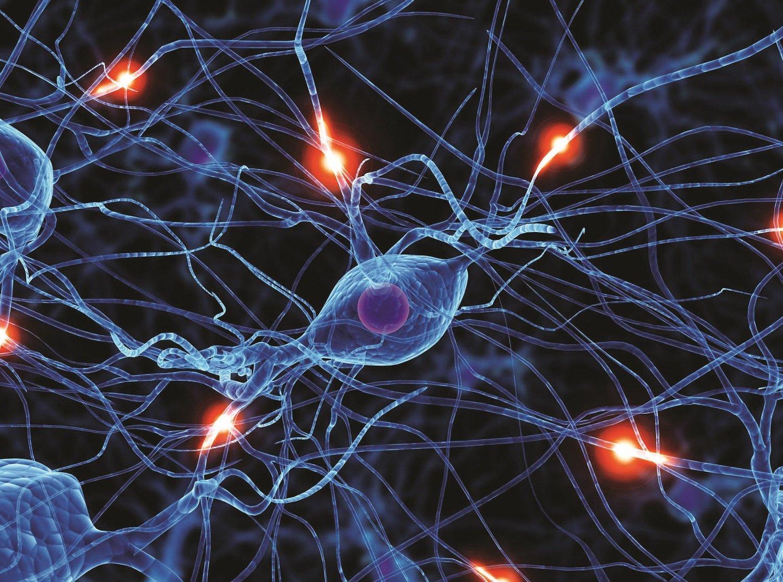 Боль основанная на поражении нервной системы