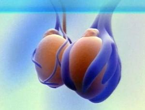 Боль в яичках при травмах