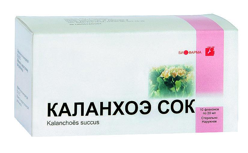 Каланхоэ от насморка детям - nashidetki net