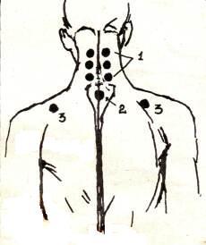 Зоны воздействия при массаже