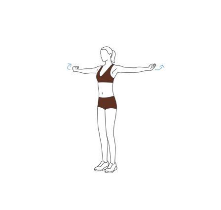 Упражнение — высвобождение грудной клетки