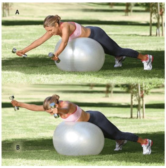 Упражнение с гантелями на фитболе