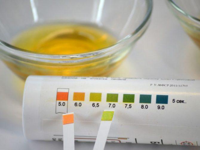 Тест-полоски для определения кислотности мочи