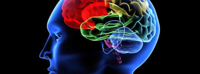 Энцефалит головного мозга симптомы у взрослых
