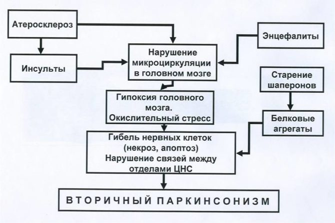 Клиника и последствия вторичного паркинсонизма (схематически)