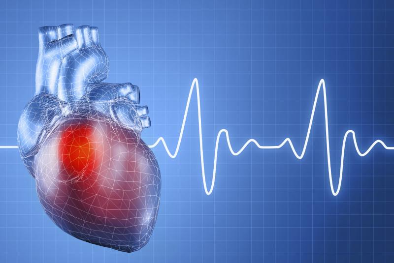 В ритме сердца: что может рассказать о человеке пульс