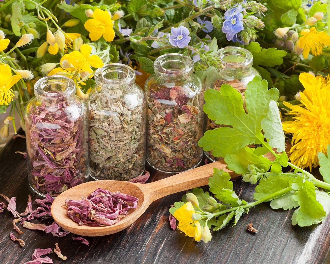 Народная мудрость против мочекаменной болезни: лекарства от самой природы