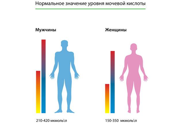 уровень мочевой кислоты у женщин и мужчин