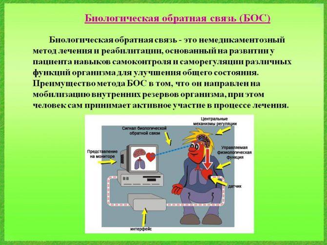 Схема биологической обратной связи