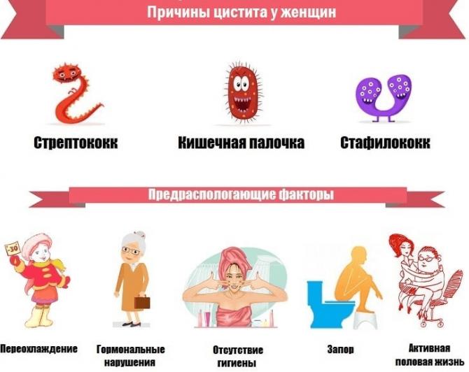 Причины цистита у женщин и провоцирующие факторы